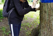 Gimnazijos ekologai – už žalią Šilutę